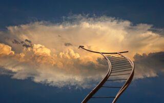 BPM Company, sky is the limit